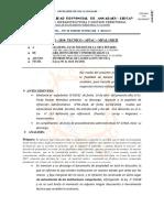 Informe 001 Puente Sicra