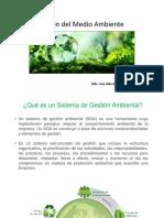 Gestión del Medio Ambiente 14.pptx