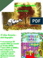 1calingruia_ciubotelele