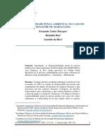 A Responsabilidade Penal Ambiental No Caso Do Desastre de Mariana