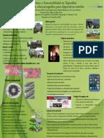 Turismo y Sustentabilidad en Tepoztlan