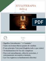 1509398149_AULA 4 - TAO.pdf