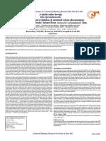 journal-file-56dfe34e93c2f5.80906638