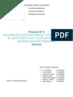 Informe 2 Práctica de Fisiología. Movimientos Espontáneos, Posturales y Reflejos