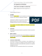 Estructura de Informe de Laboratorio.pdf