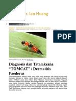 tomcat 1