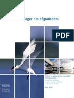 Catalogue Des Degradations Sur Chaussees Aeronautiques (STAC_Avr.2007)
