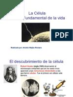 CELULA-3.ppt