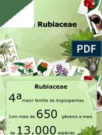 Família Rubiaceae