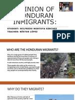 Opinion of Honduran Inmigrants