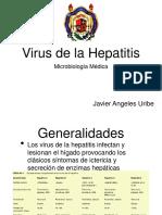 VIRUS HEPATITIS