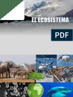 ecosistemas5b