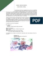 Caso_Cancer_Cervico_Uterino.doc