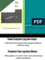 presentasi-protista-fix.ppt
