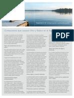 Taste___Odor_FactSheet_ES.pdf