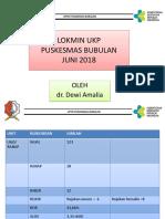06. Lokmin Ukp Juni 2018