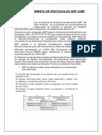DIRECCIONAMIENTO DE PROTOCOLOS ARP.docx