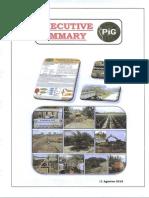 Executive Summary New.pdf