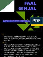 FAAL GINJAL 2