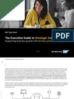 The Executive Guide to Strategic Sales Execution E-book_0
