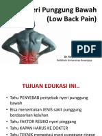 Nyeri-Punggung-Bawah-by-dr.Fery_.pptx