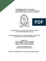 El Recurso de Casacion en Materia de Familia Analisis Doctrinario y Legal