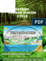Oxygen carboN cycle