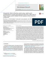 Antagonistic effects of Bacillus subtilis subsp. subtilis and B. amyloliquefaciens against Macrophomina phaseolina SEM study of fungal changes and UV-MALDI-TOF MS analysis of their bioactive compounds.pdf