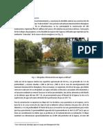 Hotel en los manglares v1.pdf