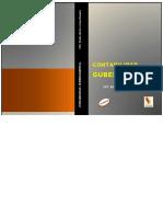 CONTA GUBER practis.pdf