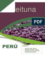 EXPORTACION ACEITUNA (1)