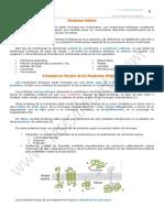 08-membranas-2-bach.pdf