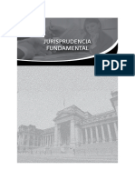 Jurisprudencia Fundamental
