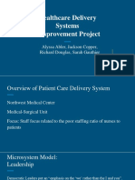 healthcare delivery systems improvement project