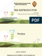 EL_SISTEMA_REPRODUCTOR_NUTRICIÓN-1[1] kary.pptx