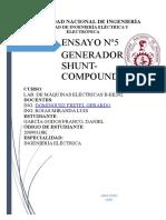 E5-PREVIO (1)