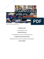 contamiancion visual- Claudia fierro.docx