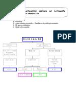 patologia-mamaria