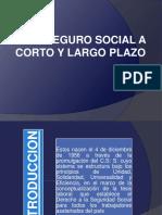 Seguro Social a Corto y Largo Plazo Derech-1