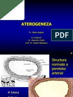 Aterogeneza Final