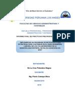 Informe Practicas Pre Profesionales III Contabilidad
