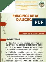Principios de Dialectica