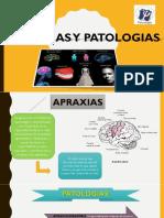 Apraxias y Patologias
