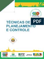 Tecnicas_de_Planejamento_e_Controle_Revisao_1.pdf