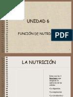 Aparato Digestivo y Respiratorio1 1208261161436989 9