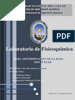 Informe 4 Determinacion Masa Molecular