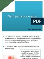 Nefropatía Por Uratos