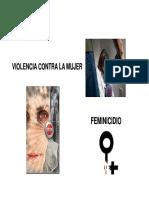 2292 Feminicidio Cha