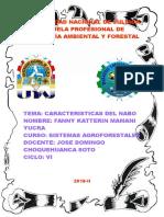 244672925 Nabo Silvestre Doc