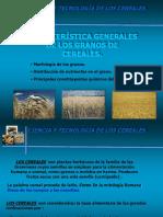 1. Caracteristicas Generales de Los Granos de Cereales
